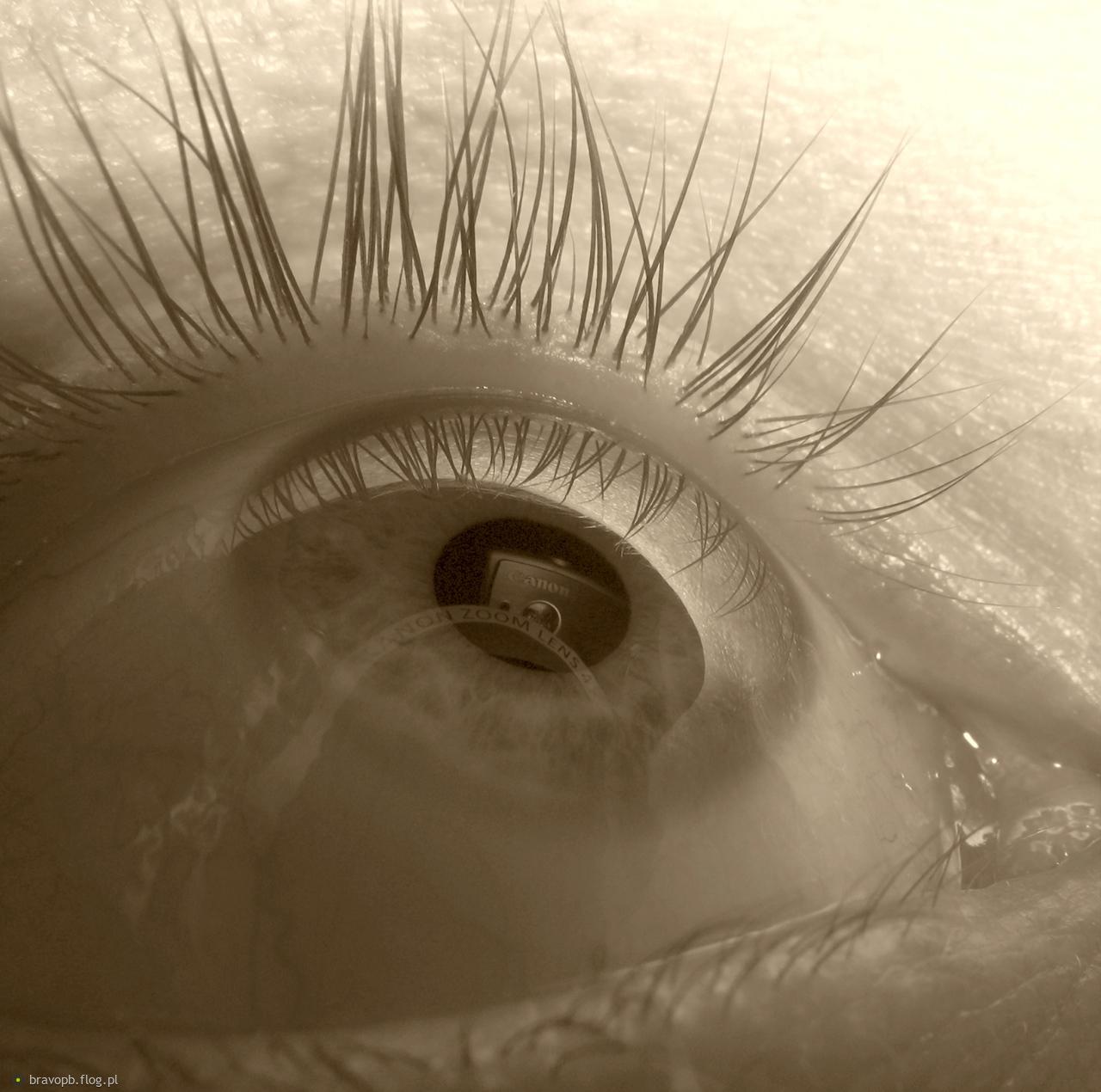 Oko obiektywu
