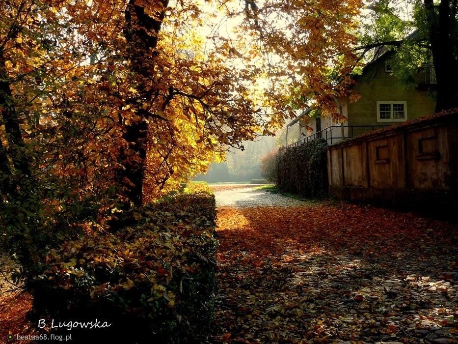 Jesiennie ...