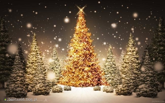 Wszystkim moim znajomym i nieznajomym życzę Wesołych Świąt :)