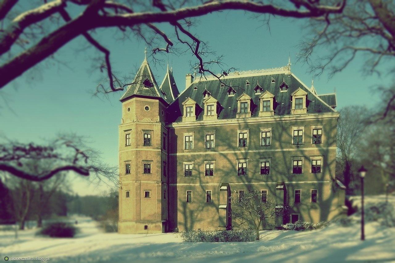 Gołuchów w zimowej scenerii ... bo lubisz zimę ... :)