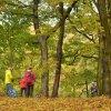 Jesień w Puszczy Zielonce :: Święto Gór na Nizinach ob<br />chodziliśmy już po raz 14<br />-ty :)