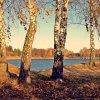 Kolorowy listopad ... jes<br />zcze ciepły ...  ::    - Następnym razem ty z<br />asiądziesz w fotelu - ozn<br />ajmił Październik.  - Wie<br />m - odparł Listopad.
