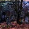 Cmentarz Żydowski przy Br<br />ackiej 9