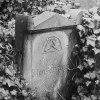 :: Stary Cmentarz Żydowski w<br />e Wrocławiu Najprawdopodo<br />bniej pojawi się tu jeszc<br />ze jedno zdjęcie z te